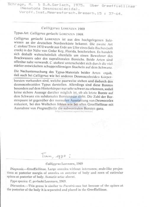 Calligyrus