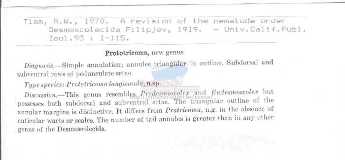 Prototricoma
