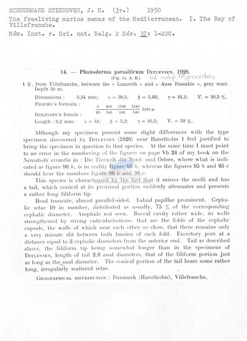 Phanoderma parasiticum