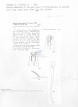 Viscosia macramphida