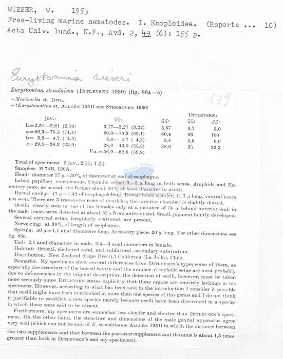 Eurystomina wieseri