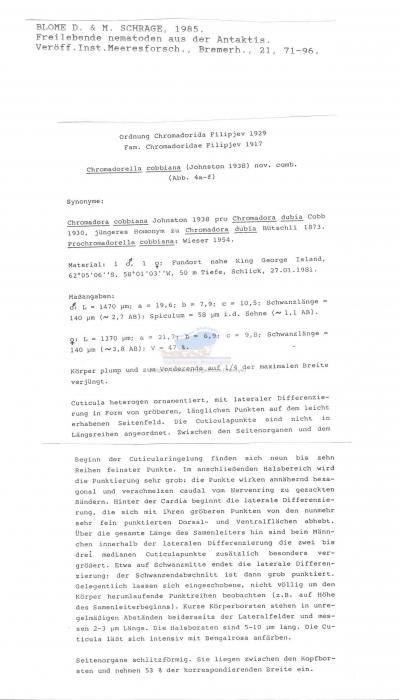 Chromadorella cobbiana