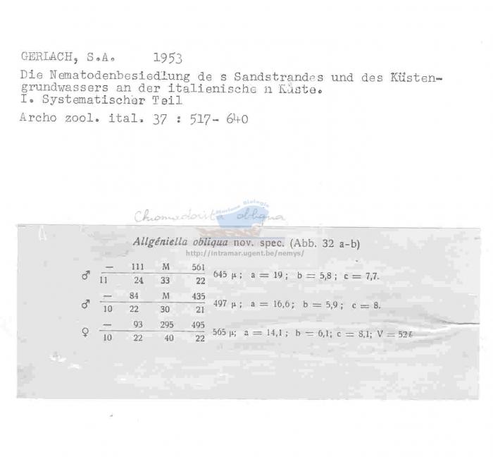 Chromadorita obliqua