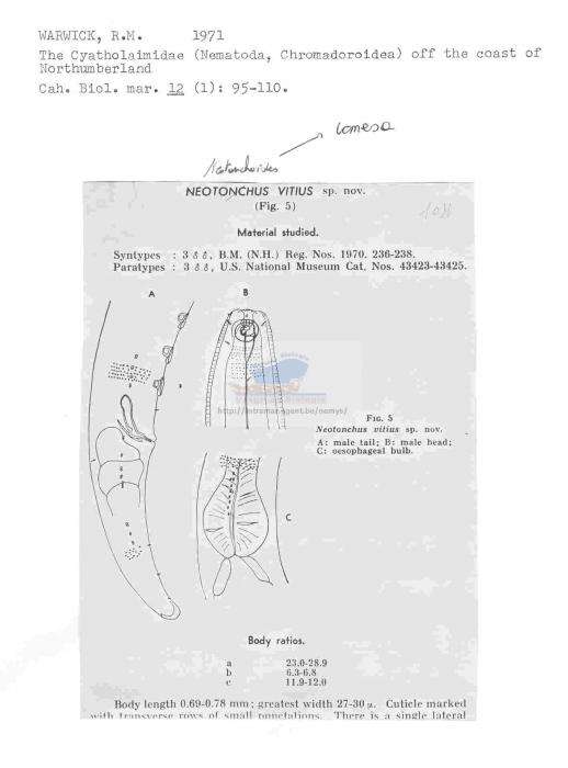 Neotonchus vitius