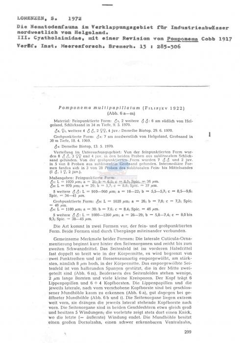 Pomponema multipapillatum