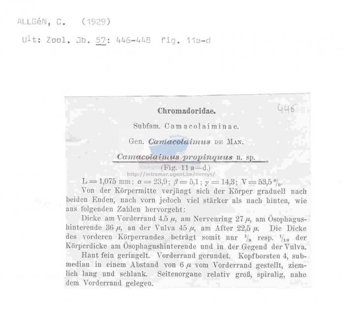 Camacolaimus propinquus