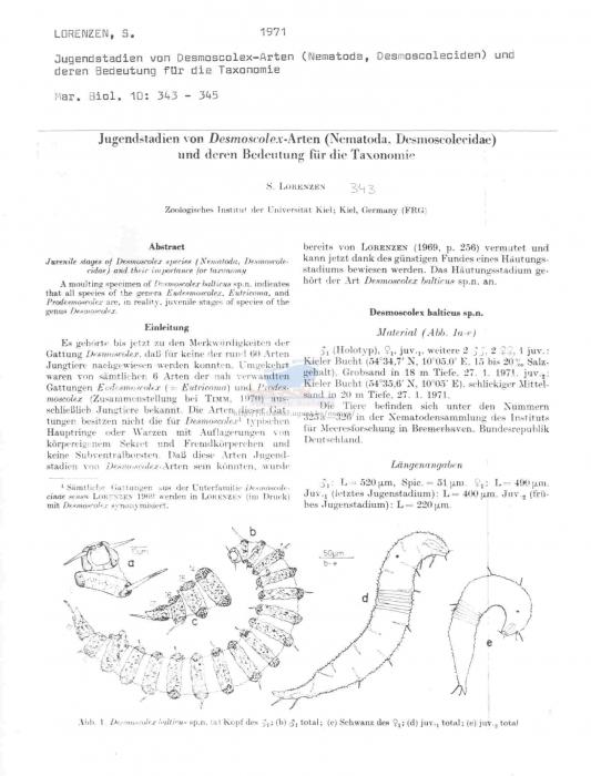 Desmoscolex balticus