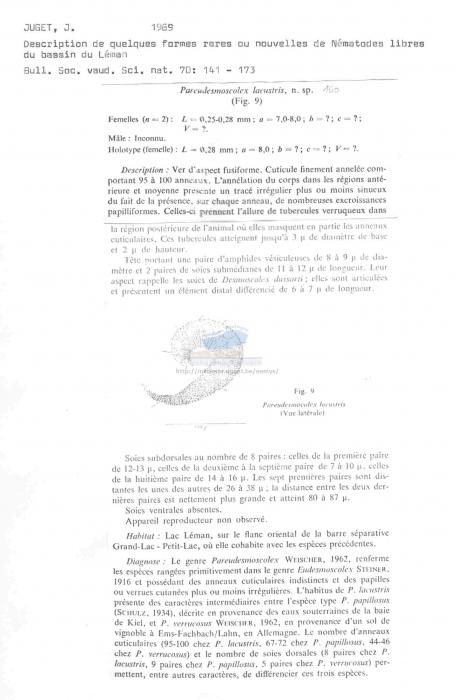 Desmoscolex (Pareudesmoscolex) lacustris