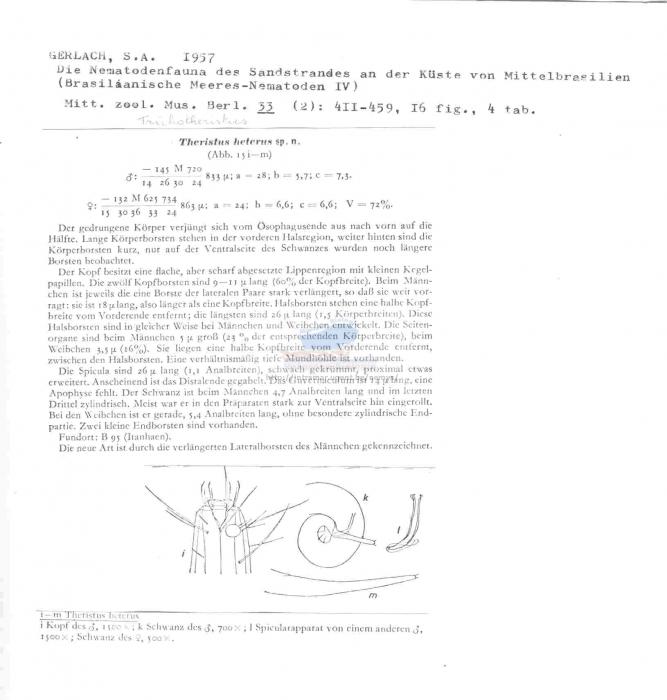 Trichotheristus heterus
