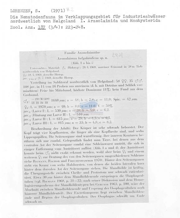 Axonolaimus helgolandicus