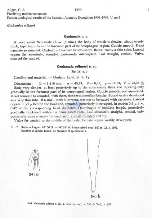 WoRMS - World Register of Marine Species