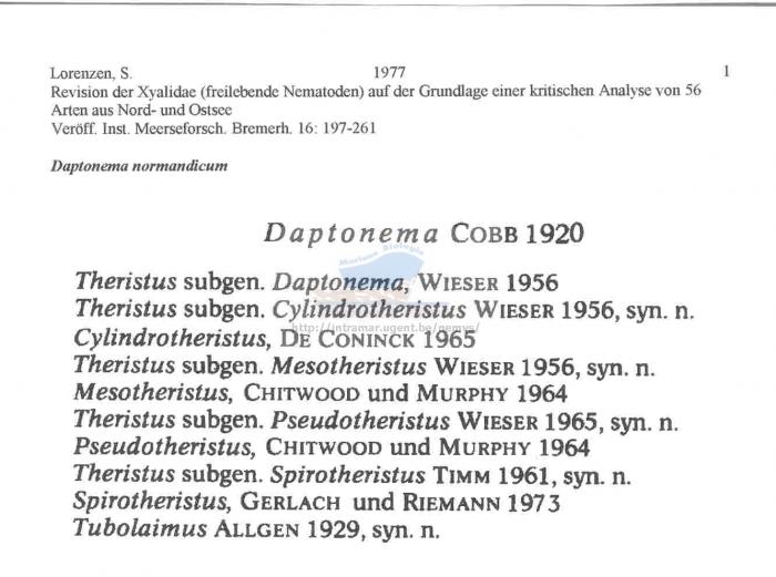 Daptonema normandicus