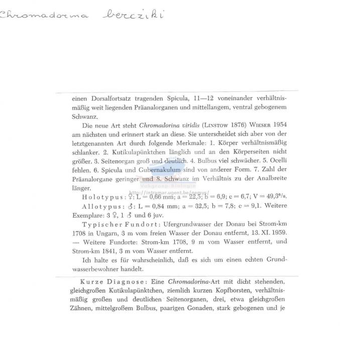 Chromadorina bercziki