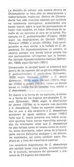 Chromadorita deseadensis