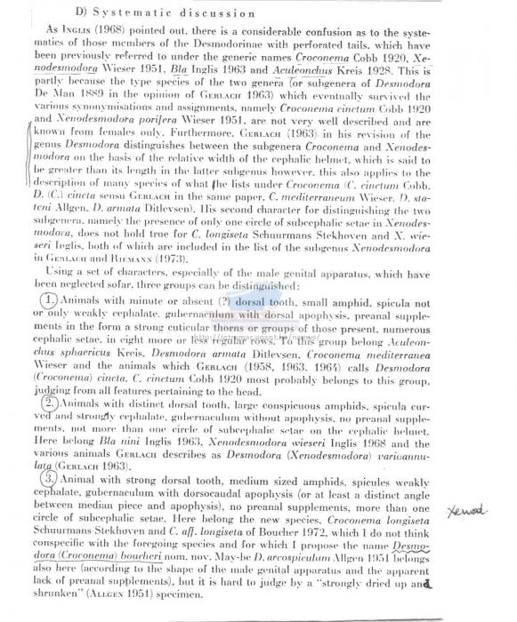Croconema ovigerum