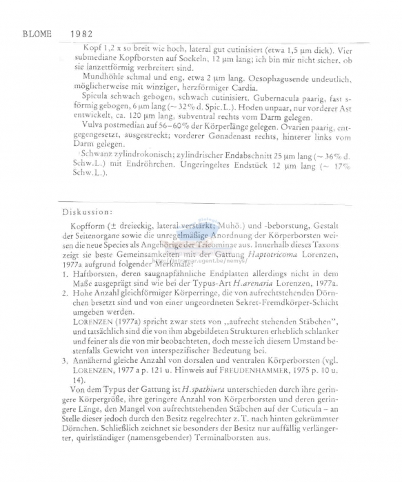Haptotricoma spathiura