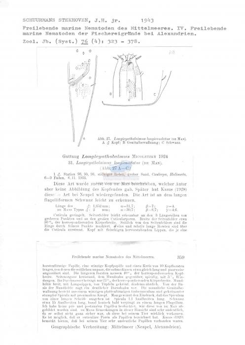 Longicyatholaimus longicaudatus
