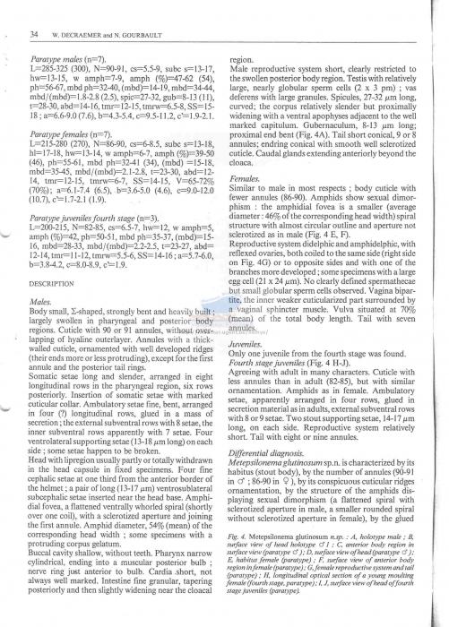 Metepsilonema glutinosum