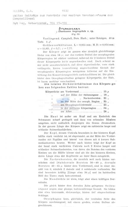 Prochaetosoma longicapitata