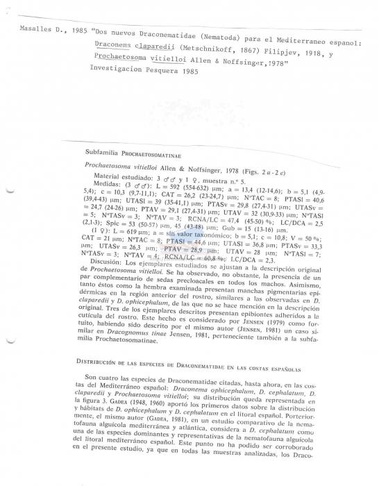 Prochaetosoma vitielloi