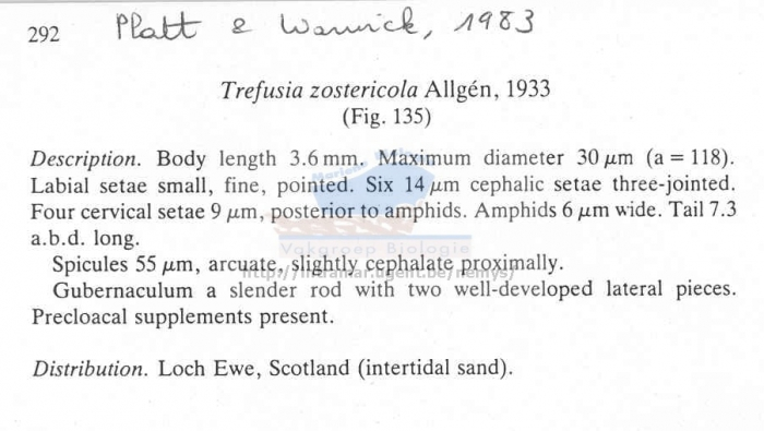 Trefusia zostericola