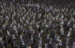 King Penguin colony 1CS5_1