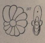 Nonionina laevis d'Orbigny in Parker, Jones & Brady, 1865