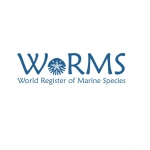 WoRMS banner