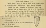 Protorhabdonella simplex was originally described by Cleve (1899) as Cyttarocylis simplex.