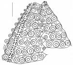 Arbacia lixula (adapical interambulacrum)