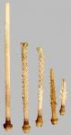 Ctenocidaris speciosa (primary spines)