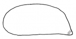 Pourtalesia hispida (lateral)