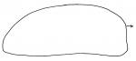 Lovenia subcarinata (profile)