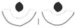 Meoma (subanal fasciole)
