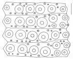 Lytechinus variegatus (interambulacral plates)