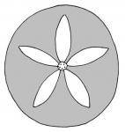 Neognathostomata (petals)