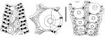 Coelopleurus floridanus (ambulacral plates)