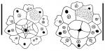 Nudechinus ambonensis (apical + periproctal plates)