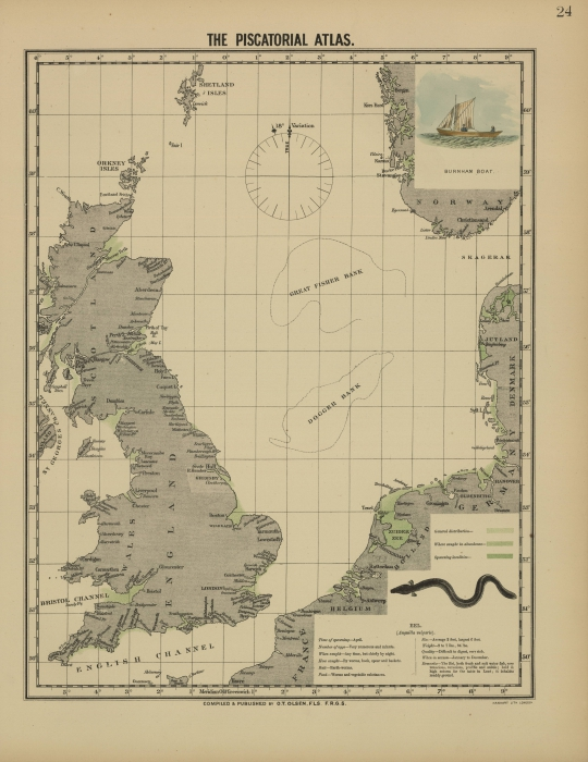 Olsen (1883, map 24)