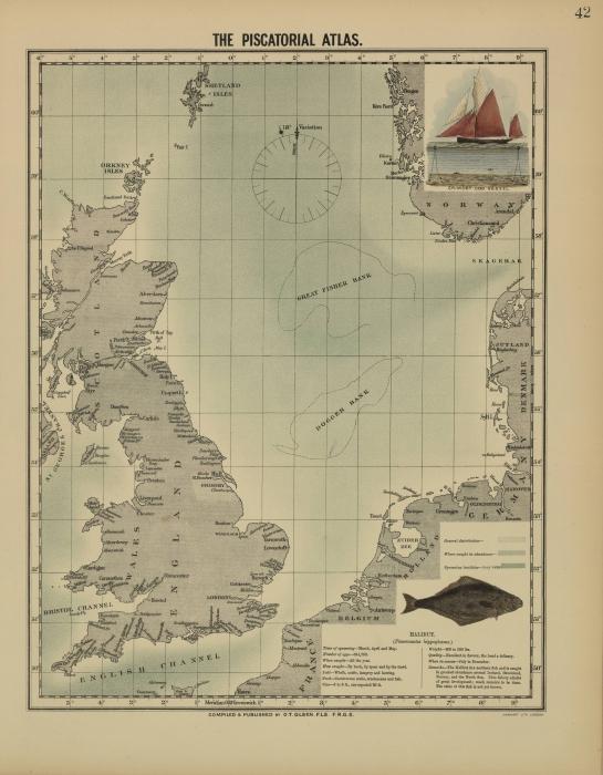 Olsen (1883, map 42)