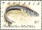 Malacanthus latovittatus
