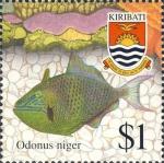 Odonus niger