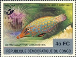 Oxymonacanthus longirostris