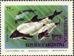 Cephalorhynchus commersonii