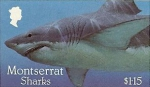 Carcharodon carcharias