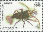 Gnathophyllum elegans