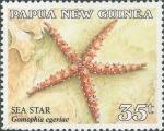 Gomophia egeriae