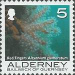 Alcyonium glomeratum