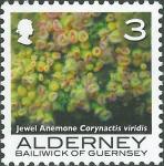 Corynactis viridis