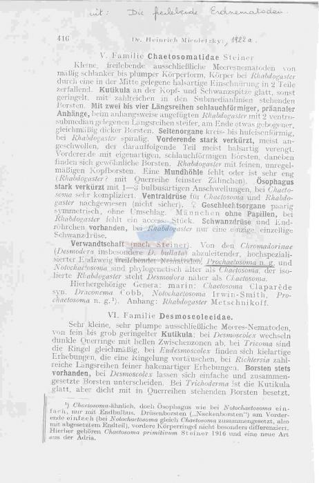 Prochaetosoma